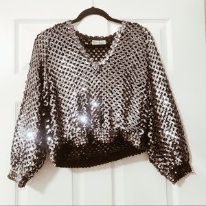 Vintage Cropped Sequin Tops